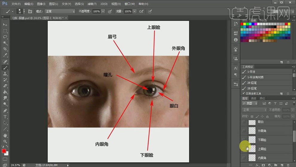 ps-cg五官解析-眼睛结构