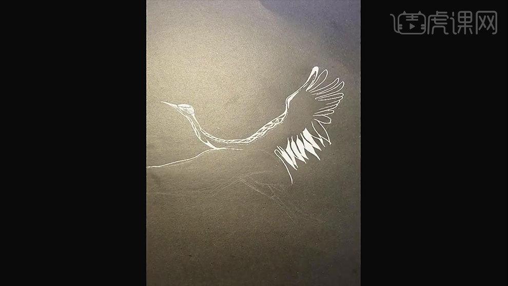 高光笔-花纹白鹤训练-黑白插画