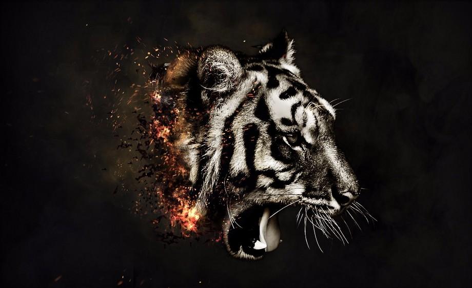ps-公益创意合成燃烧的老虎
