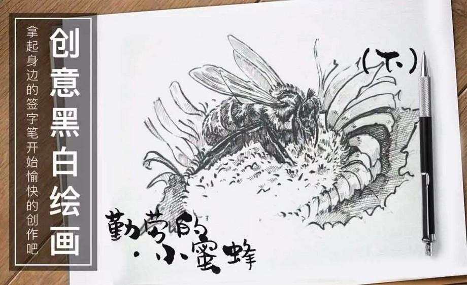 小蜜蜂(下)-针管笔手绘插画