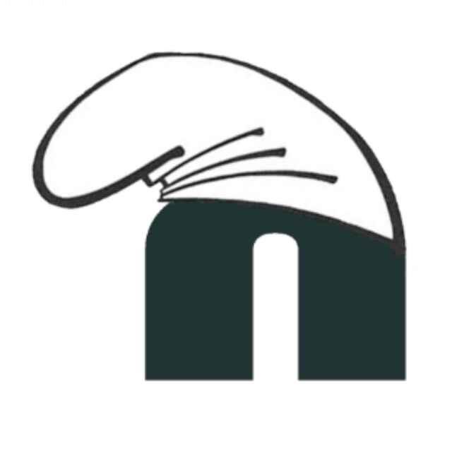 NiaoNiao团队