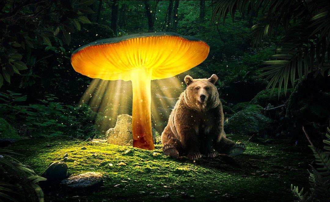 PS-发光的蘑菇特效制作