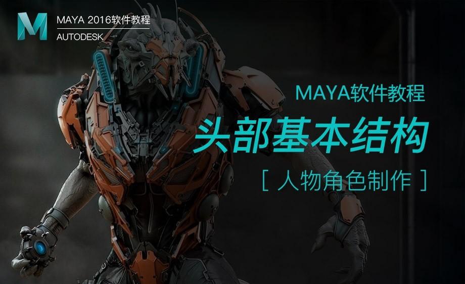 Maya-角色建模-头部基本结构