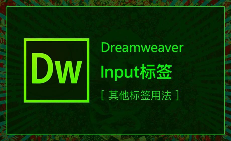 DW-Input标签