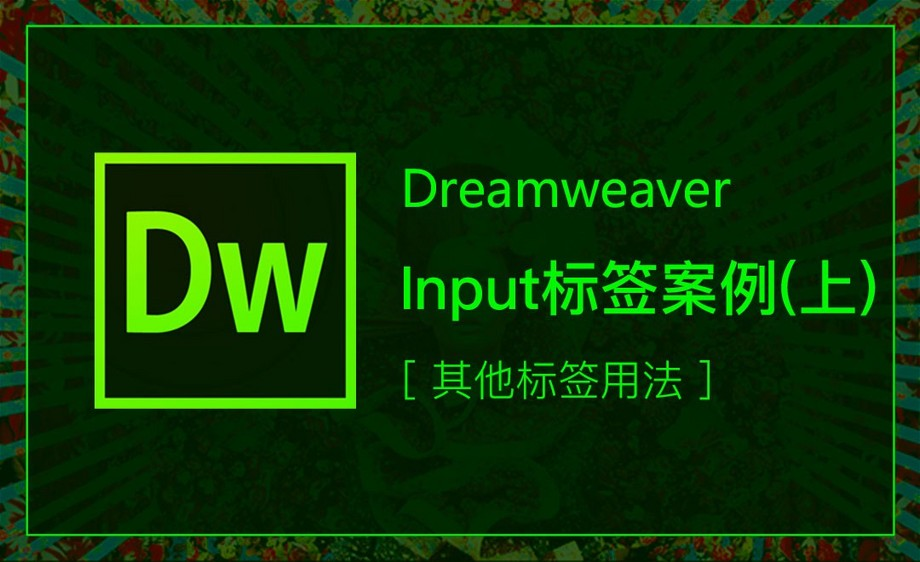 DW-input标签案例(上)