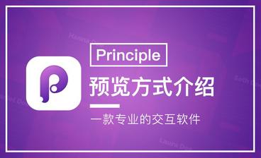 Principle-入门总结与进阶指导