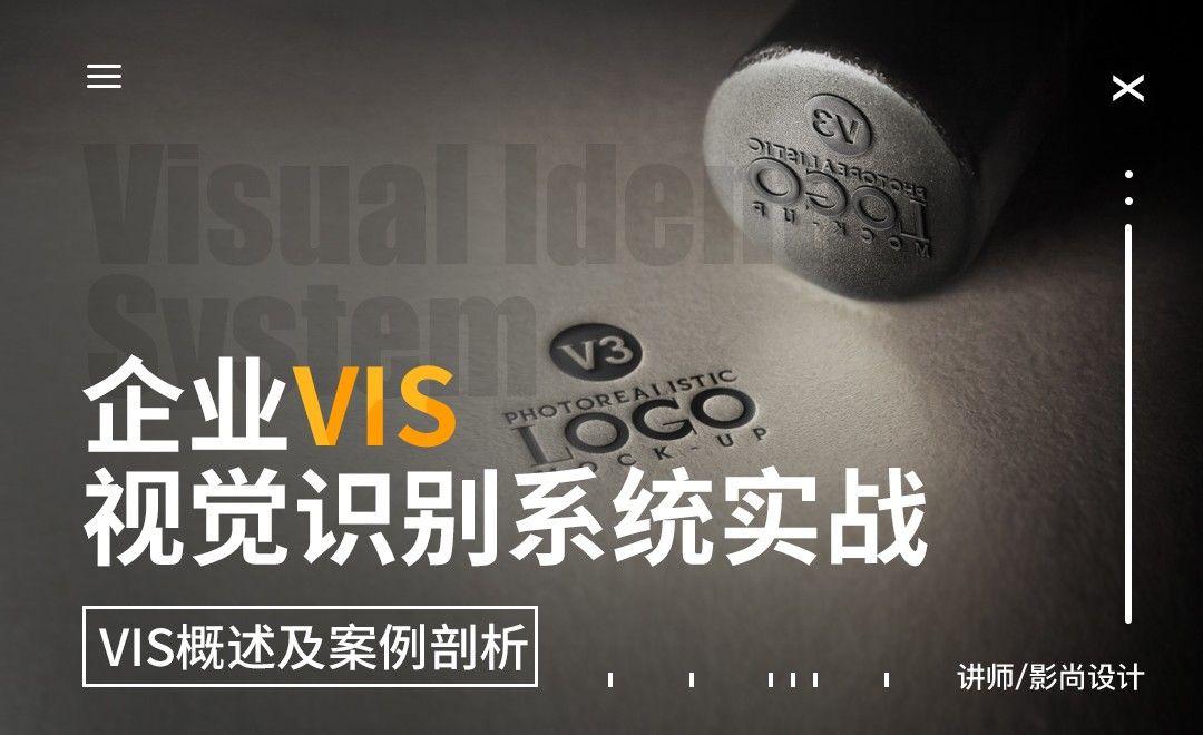 VIS概述及案例剖析