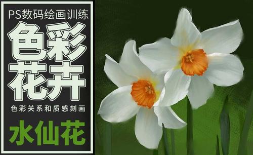 PS-板绘-色彩静物-水仙花