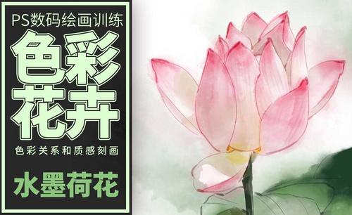 PS-板绘-色彩花卉-荷花-水墨版