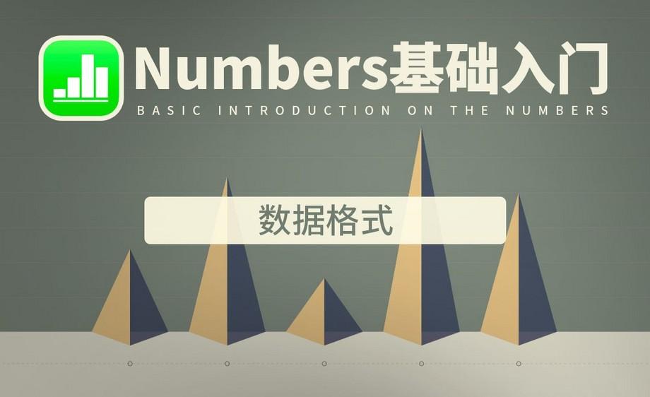 Numbers-数据格式