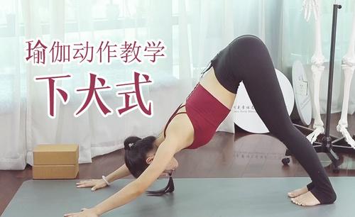 下犬式-瑜伽动作视频教学