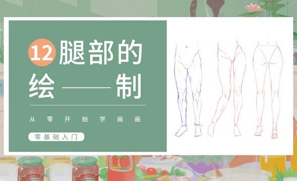PS-人体基础-腿部的结构与画法